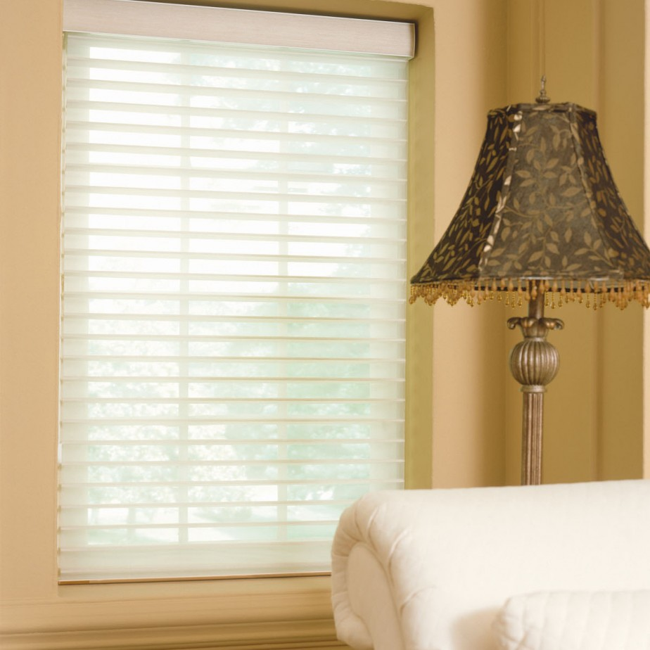 Image Result For Solar Shades Reviews